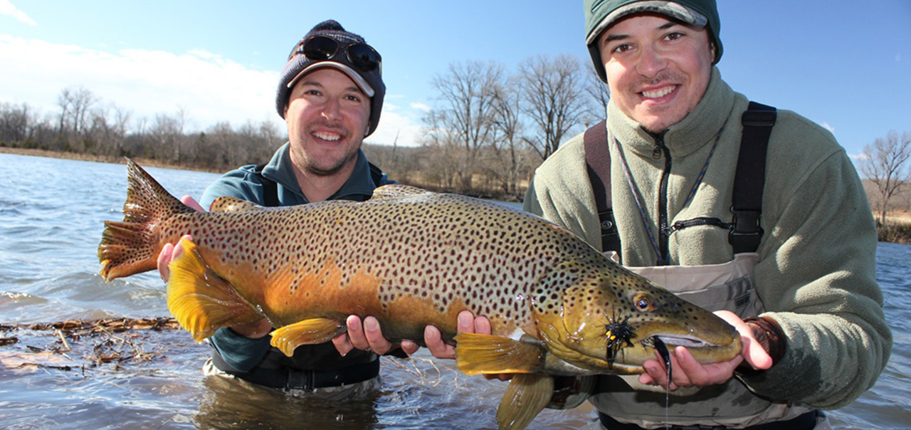 white river trout fishing guides missouri arkansas